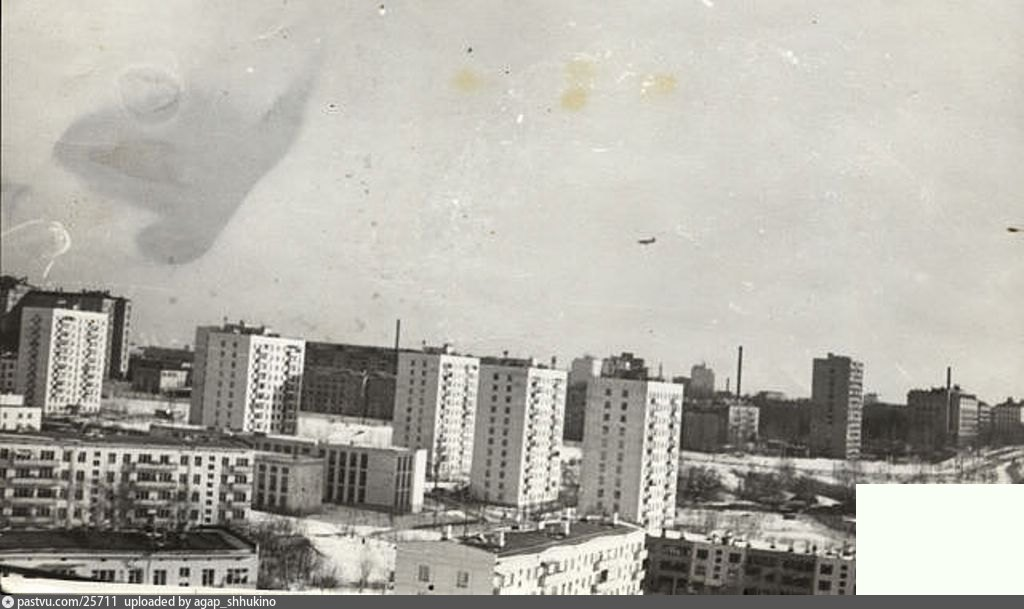 архивные фото щукино