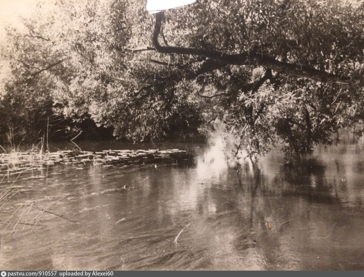 река лужа начало и конец фото карта всех