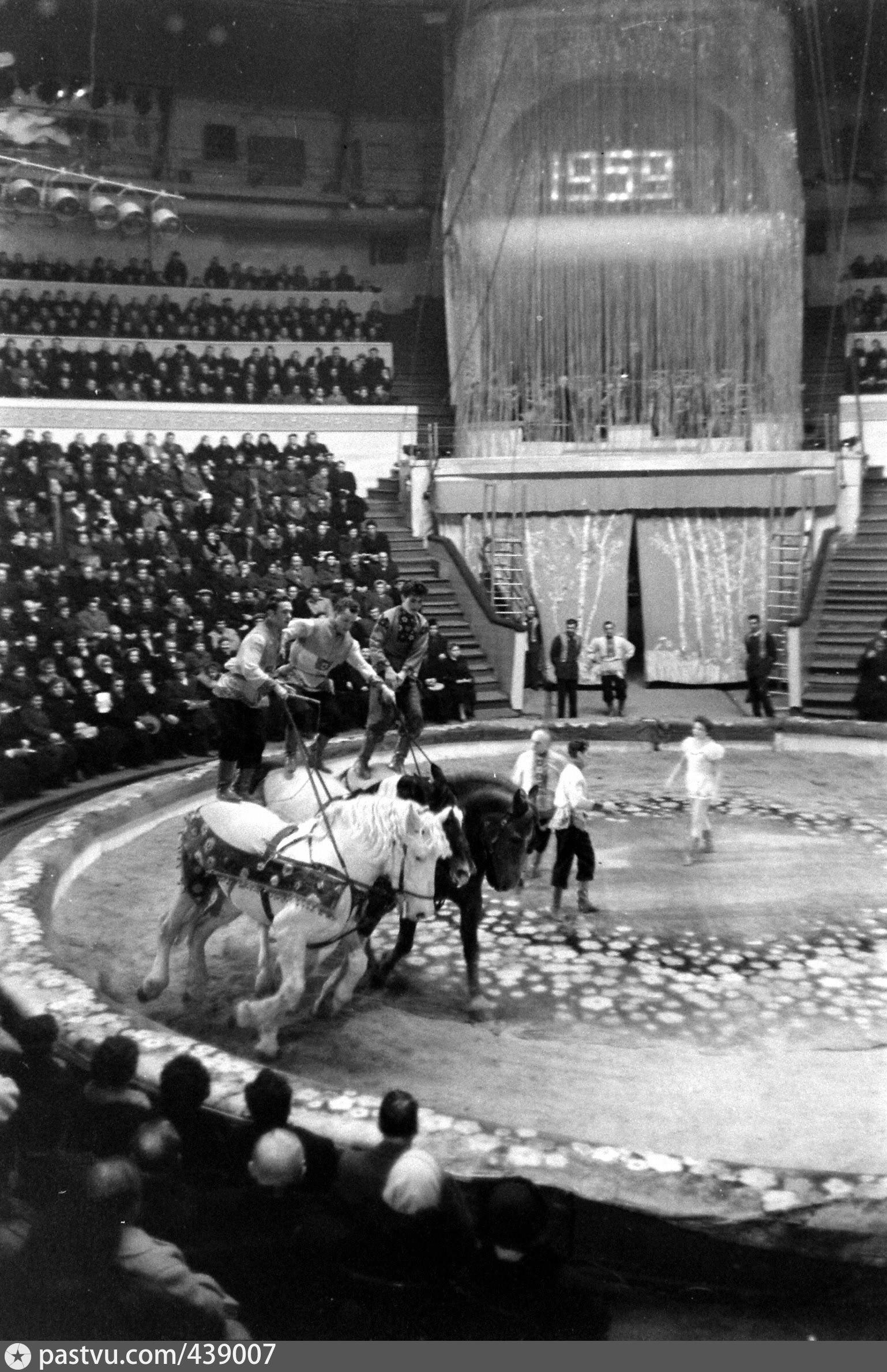 фото ленинград цирк центре этой