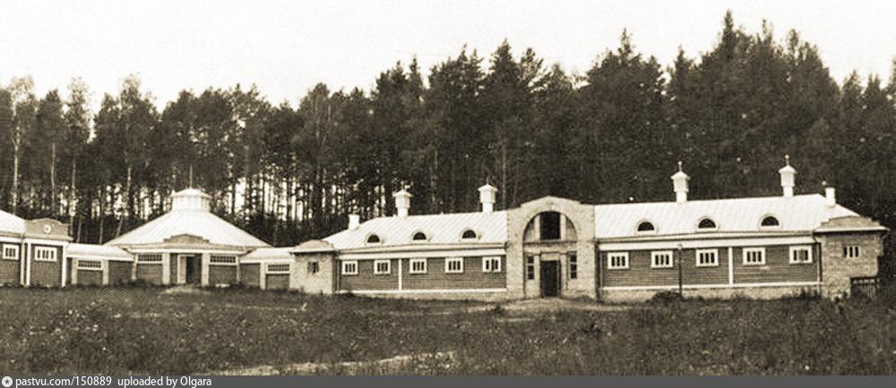 В усадьбе Иславское, 1915 год. Призовые конюшни в имении И.В. Морозова