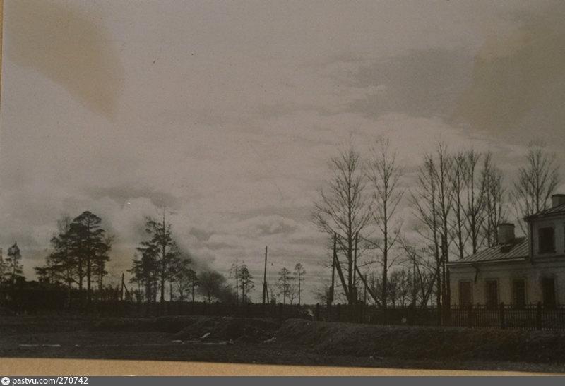 знаете, старинные фотографии сосновой поляны в фото