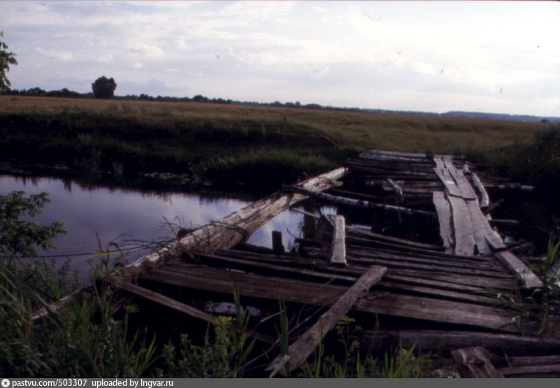 погода брянская область село невдольск