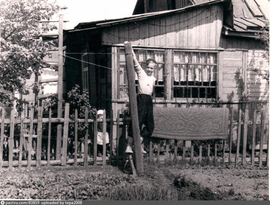 1950-1954