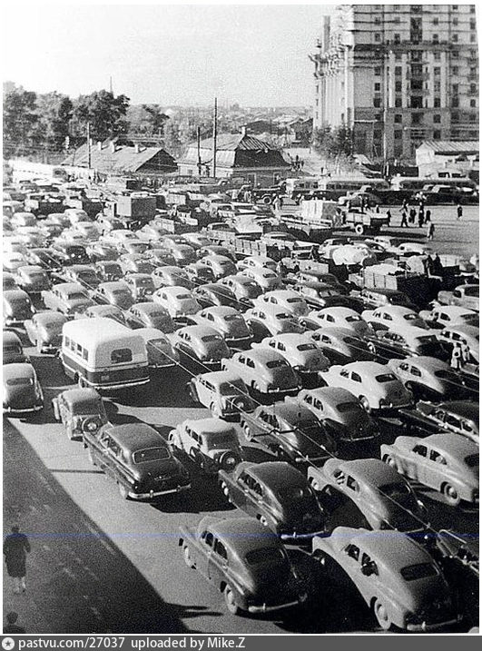 1954-1955