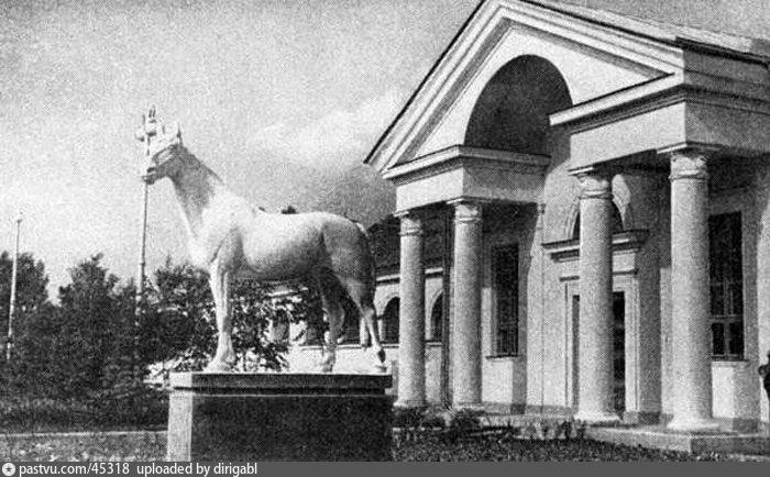 У павильона «Коневодство», 1955-1965