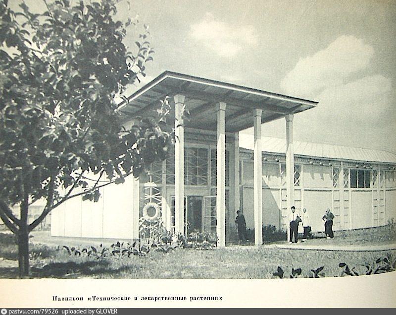 ВСХВ. Павильон Технические и Лекарственные растения (1939)
